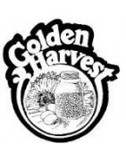 semillas golden harvest