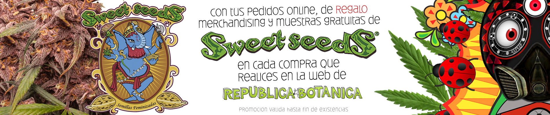banner-web-promo-sweet-seeds-2